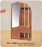 """Передпокій з дзеркалом """"ПМ-17"""" МДФ (РТВ меблі), фото 3"""