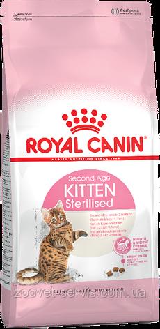 Корм для стерилизованных котят до 12 мес Royal Canin Kitten Sterilized, фото 2