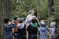 Квест на природе для подростков в Киеве от Склянка мрiй