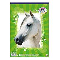 Альбом для рисования Herlitz A3 30 листов 70г Pretty Pets Horse (10088391H)