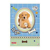 Альбом для рисования Herlitz A4 75л 70г Pretty Pets Dog (10089019D)