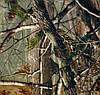 """Пленка аквапринт """"Камуфляж"""" LC066B, Харьков (ширина 50см)"""