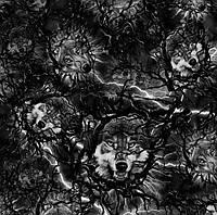 """Пленка аквапринт """"Волки"""" LRD258B, Харьков (ширина 50см) , фото 1"""