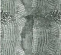 Пленка аквапринт аквапечать шкура змеи LA070B, Харьков (ширина 50см) , фото 1