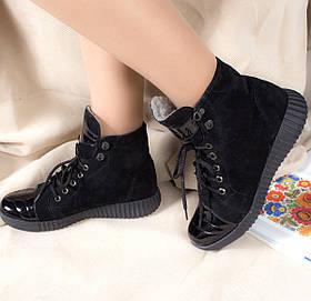 Жіночі черевики шкіряні на хутрі Губка з натуральної замші та шкіри 36-40р. 01047 40 шкіра