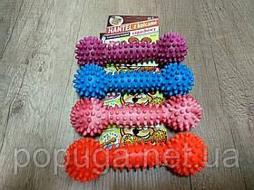 Sum-Plast Игрушка для собак Гантель с шипами №2, 15см