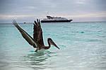 Silversea Cruises, фото 5