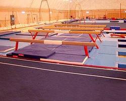 Бревна гимнастические