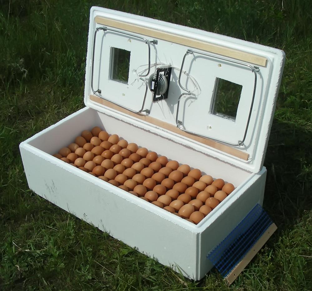 Бытовой инкубатор с механическим устройством переворота яиц ИБ-100 для перепелов