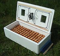 Бытовой инкубатор с механическим устройством переворота яиц ИБ-100 для перепелов, фото 1