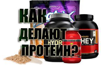 Протеин - химия или натуральный продукт? Как делают протеин?