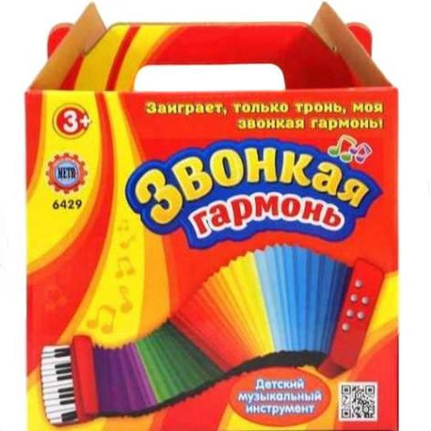 Детская гармошка 6429Black (Черный), фото 2