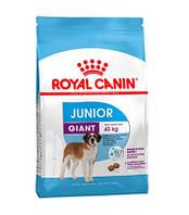 Сухой корм Royal Canin Giant Junior для щенков гигантских пород 15 кг