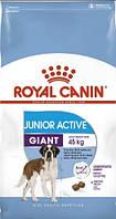Сухой корм Royal Canin Giant Junior Active для щенков гигантских пород 15 кг