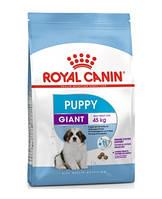 Сухой корм Royal Canin Giant Puppy для щенков гигантских пород 15 кг
