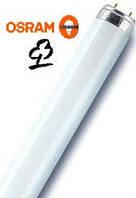 OSRAM NATURA L18W/76, лампа для холодильника, для мяса и рыбы