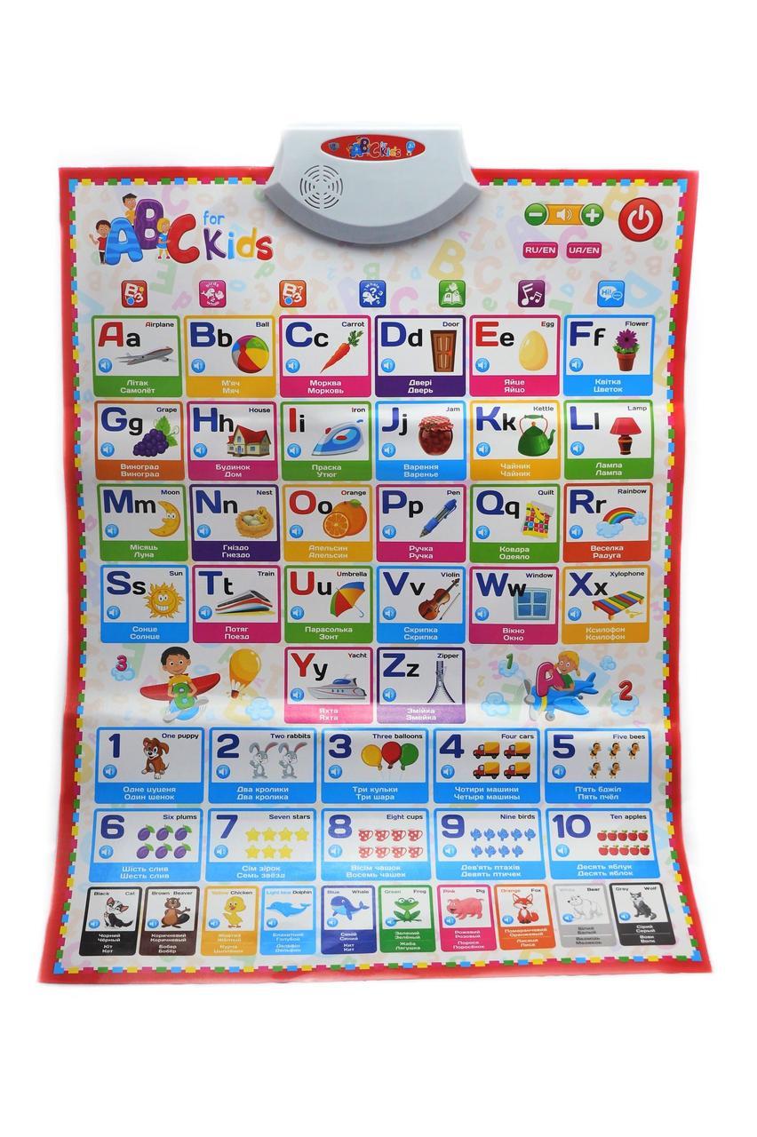 Обучающий плакат Limo Toy Английский язык (20181116V-686)