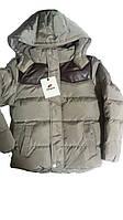 Куртка на синтепоне на флисовой подкладке для мальчиков, размеры 10,14 лет, Nature, арт. 3529