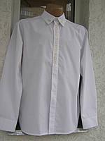 """Вышитая мужская рубашка  """"Ольвія"""" ( арт. CM7-429.0.11 )"""