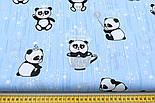 """Ткань хлопковая """"Панды в чашках и звёздочки"""" на голубом фоне, №1629а, фото 2"""