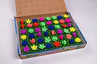 """Напухашки """"Кактуси і черепахи"""" №8083, іграшки-напухашки"""