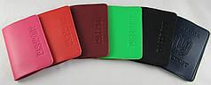Обложка для паспорта экокожа Бриск ОВ-18