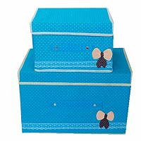 Коробка для хранения вещей органайзер набор 2 шт Голубой