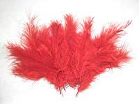 Перья красные для декора воздушных шаров, фото 1
