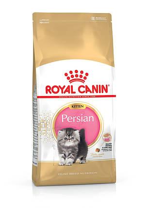 Royal Canin (Роял Канин) Persian Kitten для персидских котят, 2 кг, фото 2