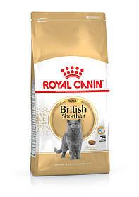 Royal Canin (Роял Канин) British Shorthair Adult для взрослых кошек породы британская короткошерстная, 4 кг