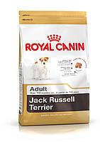 Royal Canin (Роял Канин) JACK RUSSEL Adult, корм для собак породы джек рассел, 7,5кг