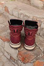Кожаные ботинки Timberland + набор для ухода за ними В ПОДАРОК Размеры в наличии 36-40, фото 3
