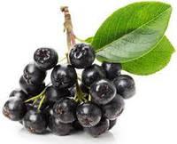 Порошок пищевой из аронии (черноплодной рябины)