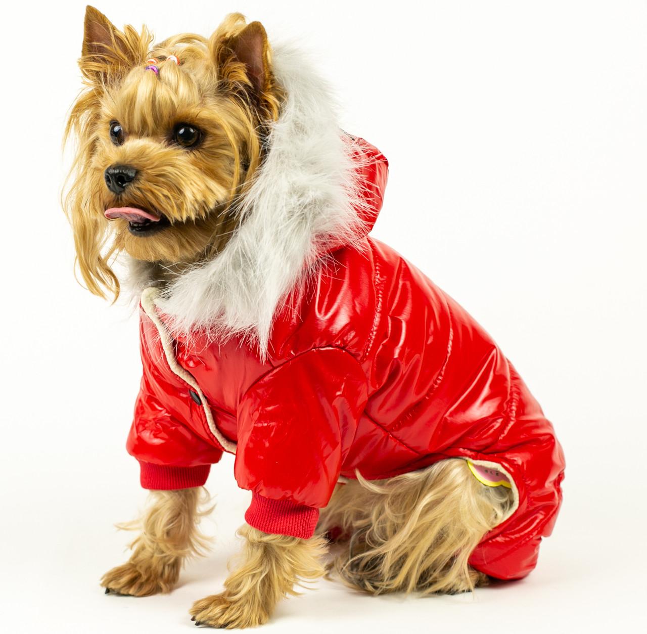 659d6b07f562 Зимний комбинезон для собак с мехом