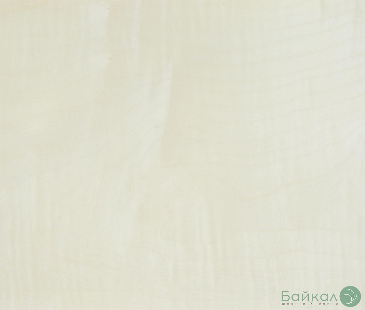 Шпон Клен (Явор) Украина 0,6 мм В сорт - 2,10 м +/9 см+