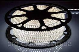 LED лента 2835 STANDART # 13-NW 120NW2835-220V-12W/m IP65 8mm Нейтральный белый 1017846