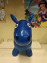 Прыгун резиновый MS 0953 (Синий), фото 3