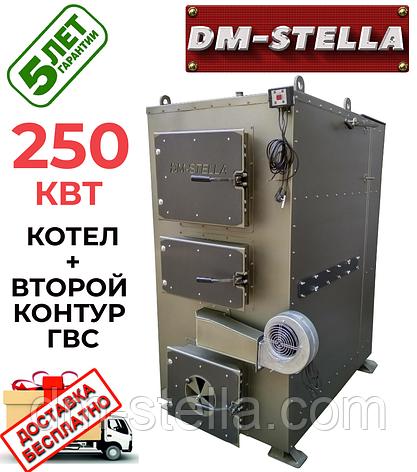 Твердотопливный котел на дровах 250 кВт DM-STELLA (двухконтурный), фото 2