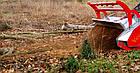 Мульчер лесной, измельчитель деревьев, лесной измельчитель, измельчитель пней  TFVD  (Ventura, Испания), фото 4