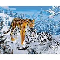 Картина по номерам Идейка Два тигра КН194 40 х 50 см, фото 1