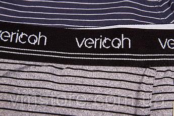 Мужское белье трусы Vericoh увеличенные 237В, фото 2