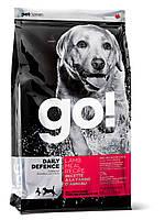 Go!Для щенков и взрослых собак со свежим ягненком (Daily Defence Lamb Dog Recipe 24/14);11.34 кг