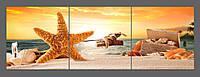 Модульная картина на стекле Морская звезда 120*40 см