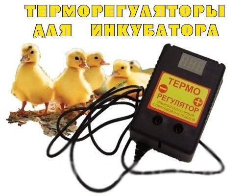 Цифровой микропроцессорный терморегулятор ЦТР-2 (розеточный),электрооборудование для дома,качество,надежность, фото 2