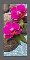 Модульная картина на стекле Орхидеи 120*50 см