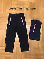Лыжные утепленные штаны для девочек оптом, F&D, 116-146 см,  № LH915, фото 1