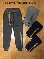 Спортивные утепленные штаны для мальчиков оптом, Active Sports, 134-164 см,  № HZ-6713, фото 1