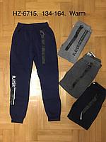 Спортивные утепленные штаны для мальчиков оптом, Active Sports, 134-164 см,  № HZ-6715, фото 1