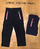 Лыжные штаны утепленные для девочек F&D оптом , 116-146 pp.