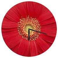 Настенные часы круглые Красный цветок 36 см (CHR_O_15M043)